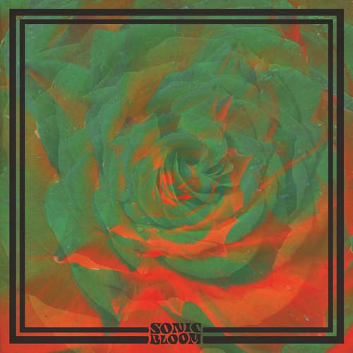 night-beats-sonic-bloom-art