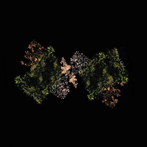 woodsman-self-titled